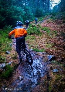 Trail Leading from OrangeFox Bikes in the Scottish Highlands.